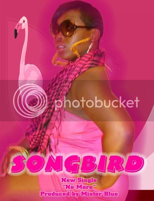 SONGBIRD'S NEW SINGLE