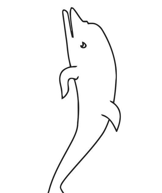 malvorlagen delfin royale  amorphi