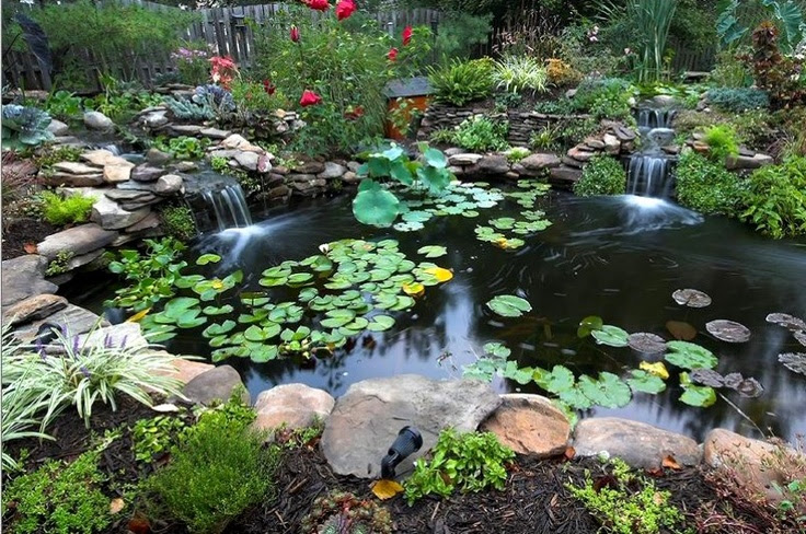 Relaxing Outdoor Pond | Pond | Pinterest