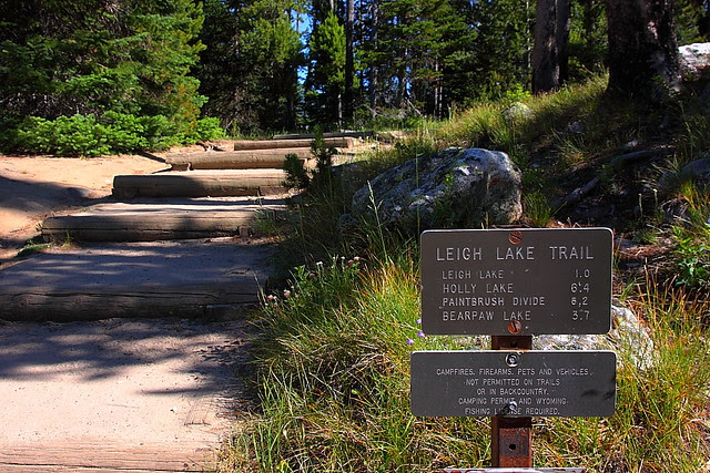 IMG_3835 Leigh Lake Trail