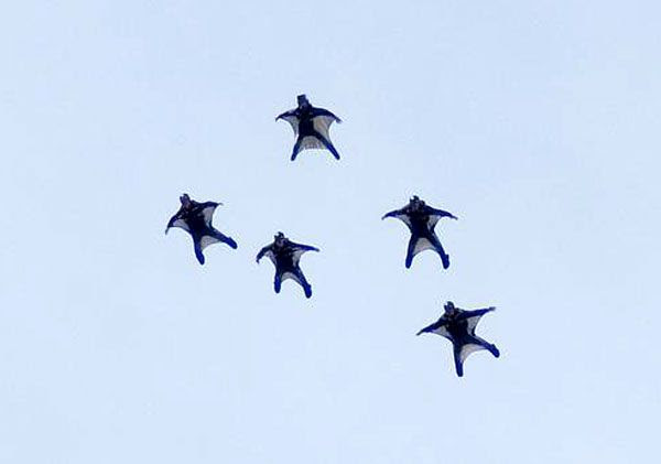 Parachutists portraying NEST soldiers skydive over Chicago.