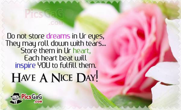 Good Morning Have A Nice Day Quote Archidev