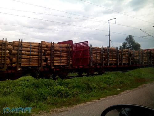Comboio com troncos de madeira [en] Train with hood