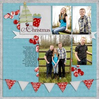 christmas-card-photos-2-sqs1214.jpg