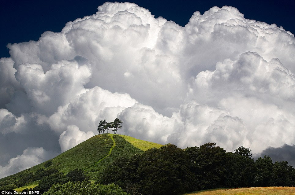 Remarkable: Clouds pile up over a hill top on a bright day at Colmers Hill, Bridport in Dorset. The photographer spends hours researching the best locations to capture cloud pictures