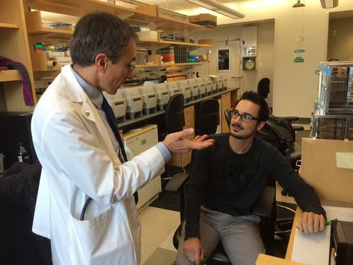 <p>Jordi Merino, el primer autor del artículo, junto con otro de los autores, Jose Carlos Florez en el Centro de Medicina Genómica, en el Massachusetts General Hospital. / URV</p>