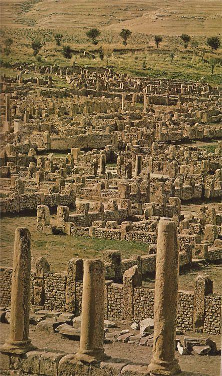 Ruins of Timgad (Algeria, 1973)