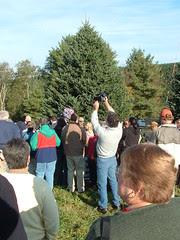 Fir Tree Press Pit