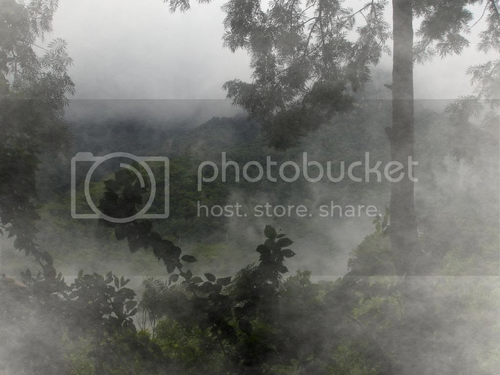 photo fogged_pic.jpg
