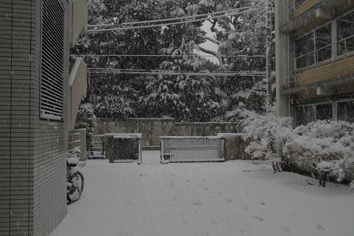 Back entrance of Wakeijuku in snow
