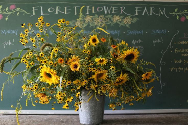Sunflowers, solidago, millet, fennel, rudabeckia triloba and 'chim chimnee'