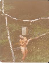 N.Z.F.S. Shower time