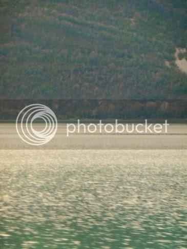 photo b521c8ec-dd75-43d3-b08f-22fcf7bf9766_zpshhwhmb7x.jpg