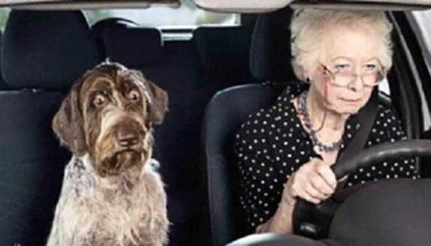 http://blindgossip.com/wp-content/uploads/2012/05/old-lady-driving.jpg