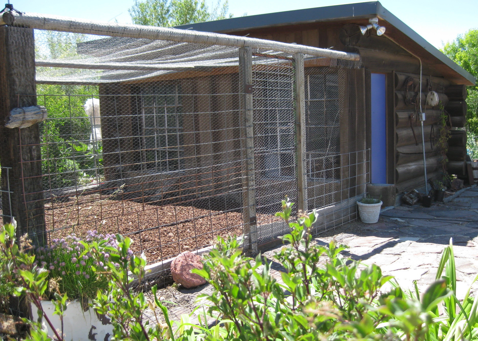 How To Build A Poultry House For Layers Design Your Own Chicken Coop