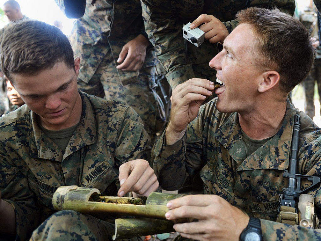 Cobra Gold 2013 - Militares sobrevivem com sangue de cobra na selva tailandesa 06