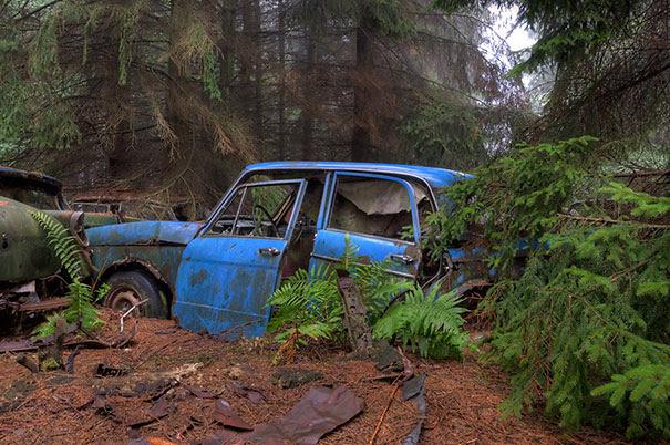 Chatillon-car-cemitério abandonado-carros-cemitério-Bélgica-5