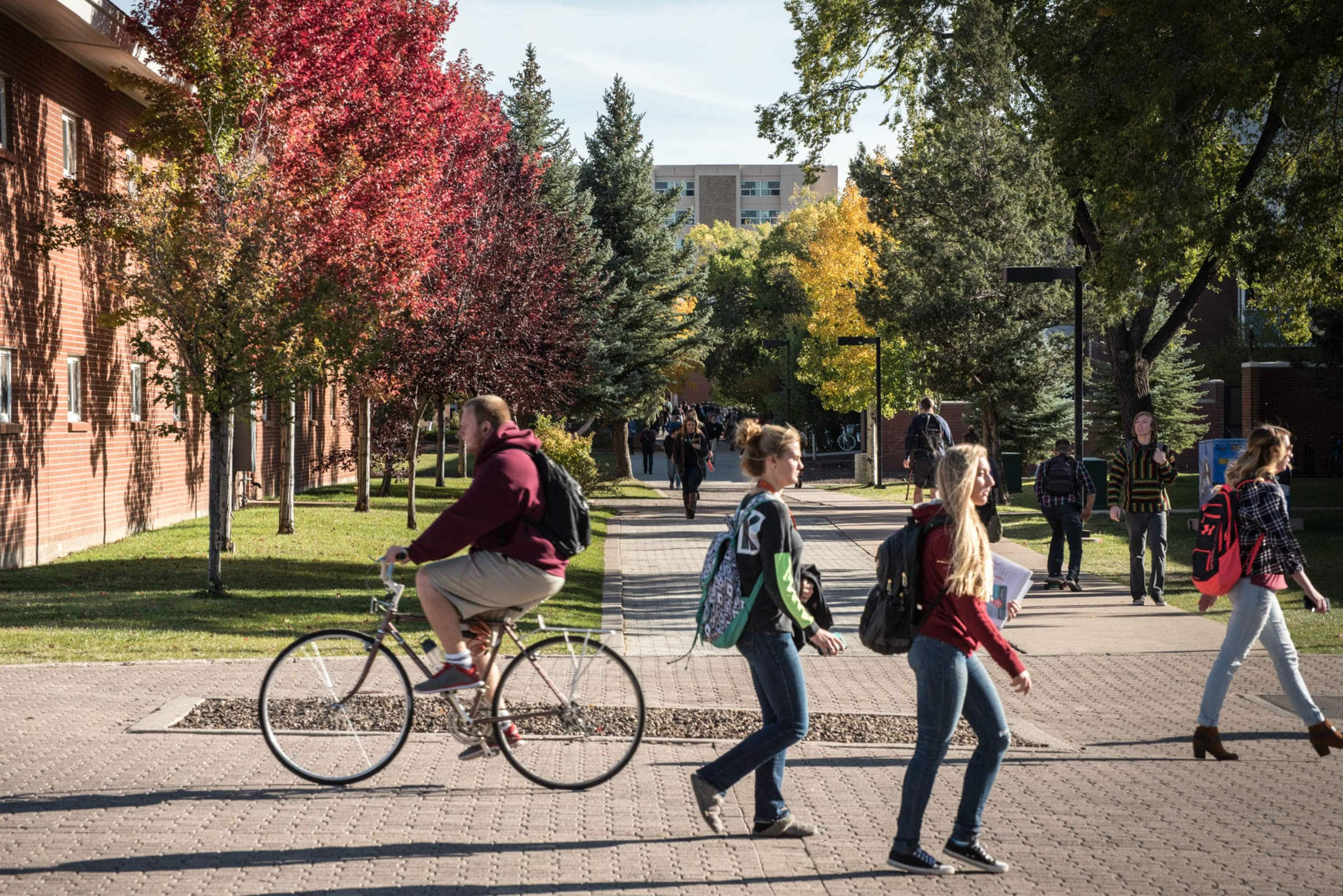 nau students on campus with autumn foliage