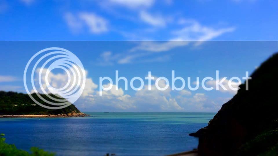photo 1375259_10151932497721202_1963116959_n.jpg