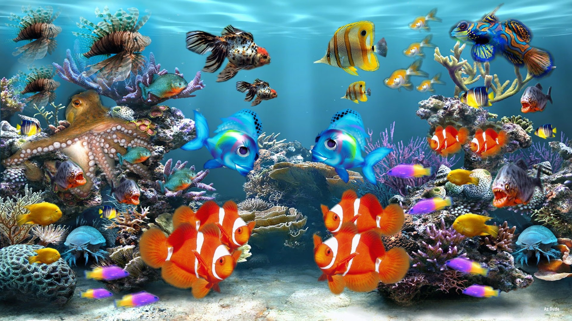 Hd Fish Background Tropical Hd Fish Wallpaper 8078