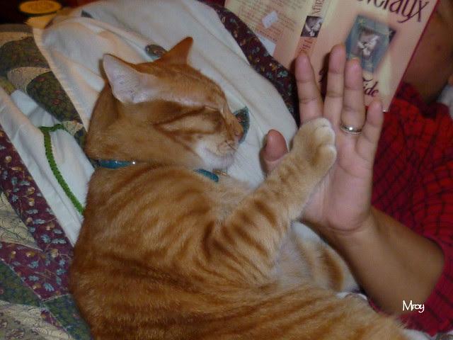 Cuddling wif mama