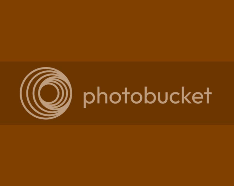 Download 7800 Wallpaper Lucu Warna Coklat HD Terbaik