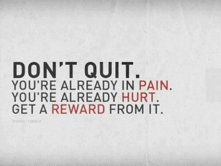 No Pain No Gain Quote Quote Number 688694 Picture Quotes