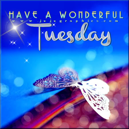 Have A Wonderful Tuesday 13 Graphics Quotes Comments Images
