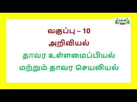 ஆய்வுக் கூடம் Std10 TM அறிவியல் Thaavara Ullamaipiyal Matrum Seyaliyal Kalvi TV