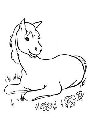 Ausmalbilder Liegendes Fohlen - Pferde Malvorlagen