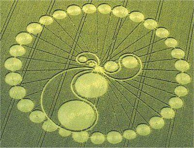 http://www.wakingtimes.com/wp-content/uploads/2012/07/WIKI-Crop-Circle.jpg%3F9d7bd4