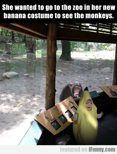 She Wanted To Go To The Zoo In Her New...
