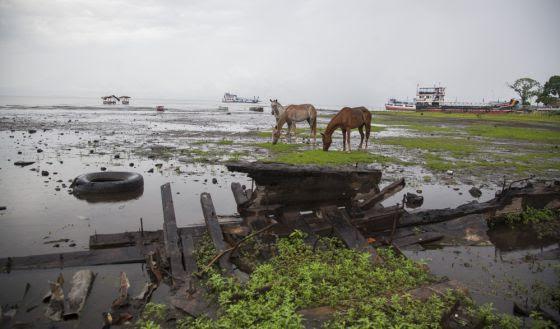 Basura y el esqueleto de una barcaza que la bajada del nivel del agua ha dejado cerca del muelle de Moyogalpa, en el lago Cocibolca.