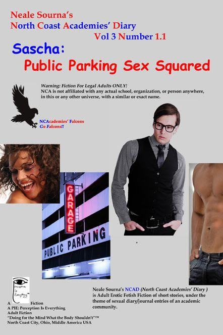 ebook cover NCAD 3.1.1 Sascha: Public Parking Sex Squared