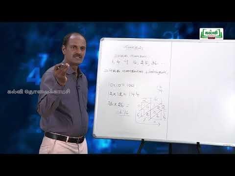 ஜியாமெட்ரி பாக்ஸ் Std 8 Maths எண்கள் வர்க்கம் பண்புகள் பகுதி 1 Kalvi TV