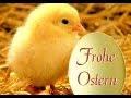 Einzigartige Frohe Ostern Sprüche Lustige