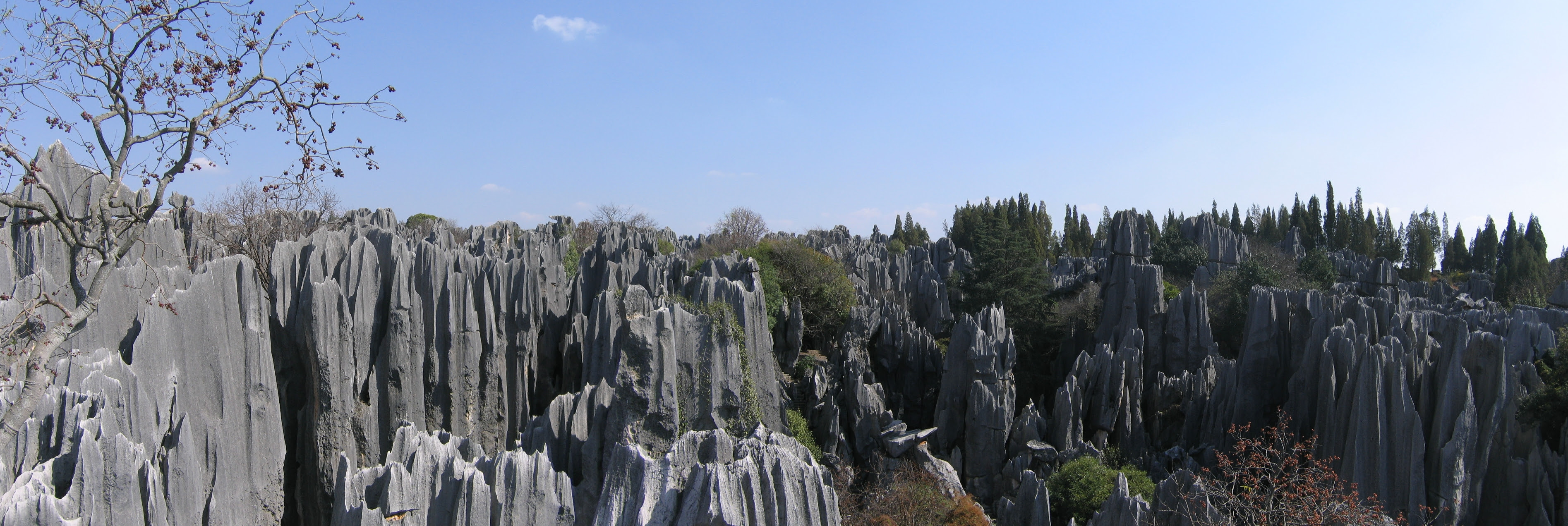 http://upload.wikimedia.org/wikipedia/commons/9/92/Stone_Forest_Panorama.jpg