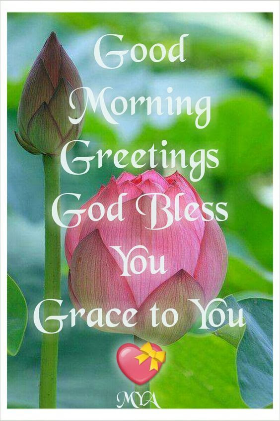 Good Morning Greetings God Bless You Grace To You Pictures Photos