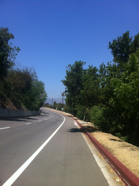 "Did 20 miles last Wednesday in L.A.- started at the L.A. Zoo down to my house in Hancock Pahk and then back up hill to the zoo. 20 miles in 3 hours, which theoretically puts me under 4 hours for 26.2. THEORETICALLY!!!!! I will say that the hills on that 20 mile run seemed (and I believe factually) are much tougher than Boston, so I felt like if I can do that specific 20 then I am ""ready"" for Boston. I wanted to have a long run that started mostly down hill like Boston does. Everyone says how the downhill- in Boston the first 5 miles are noticeably downhill- can reek havoc. However, my trainer has told me a way to combat that is to act as if you are about to sit down in a chair and let the moment do the work. Also always staying light on my feet. So far that has worked. That being said it was getting hot by the end of that 20 miles and I did feel for a second that I was running at an angle- like diagonal, if that makes any sense…mind trippin' out- but I paid attention to that and thought ""run tall"" and corrected myself. I definitely finished strong because I started ""booking' it"" as we used to say as kids, so I could make the 20 miles in 3 hours. And I did."