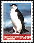 Chinstrap Penguin Pygoscelis antarcticus