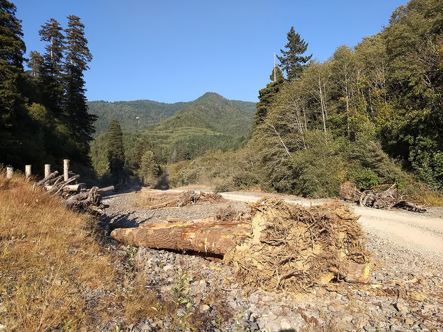The Yurok are working to conserve and restore the Klamath River basin, to which they are spiritually and economically linked. Part of the restoration involves placing logs in the river, such as these ones that have been prepared on its banks, to channel the water and retain sediment and thus recreate the habitat needed by salmon, the species that is key to the Yurok culture. Credit: Emilio Godoy/IPS