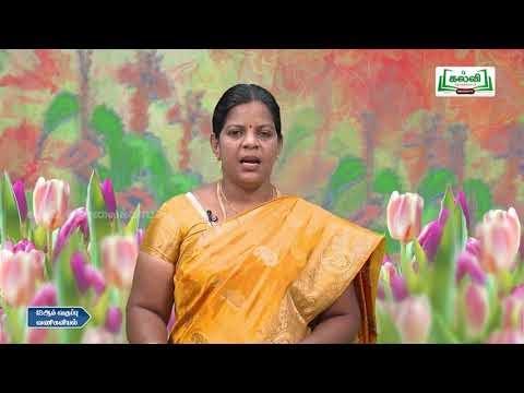 12th  Commerce சந்தையிடுகையின் அடிப்படைகூறுகள்  அத்தியாயம் 13  பகுதி 1 Q&A Kalvi TV