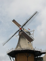 Windmill with 2 Blades Covered