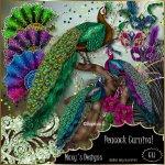 Peacock Carnival