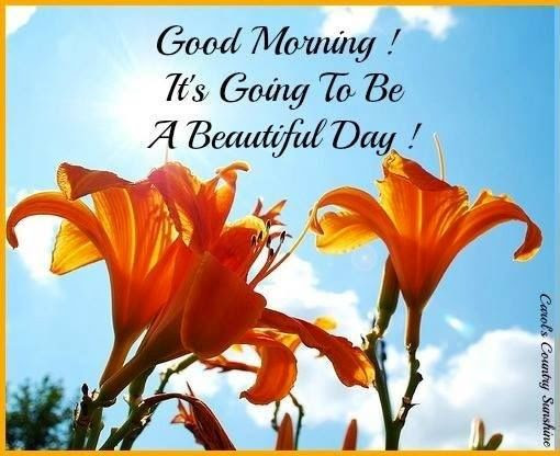 Good Morning Its Going To Be A Beautiful Day Pictures Photos And