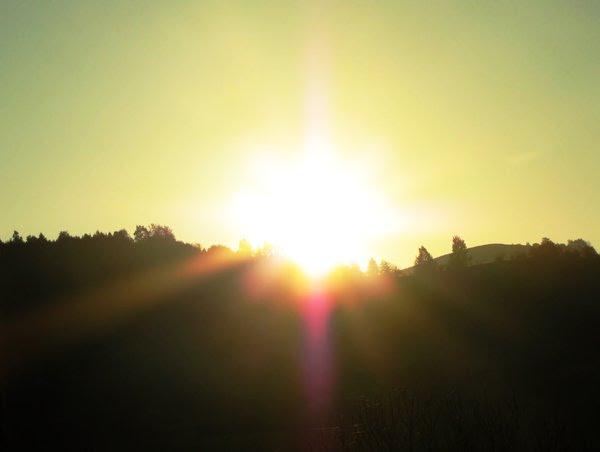 morning sun: no description