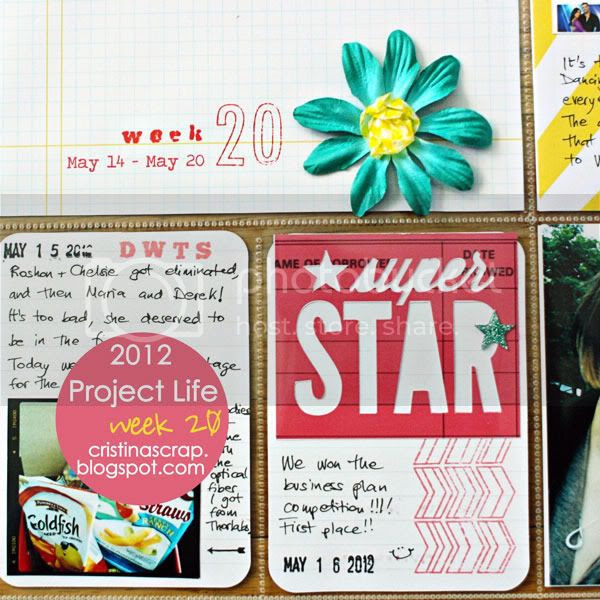 Project Life - Week 20
