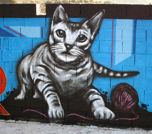 Gato by koolkiz