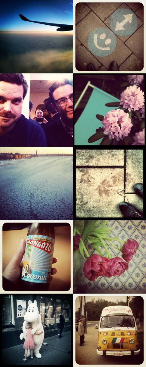 instagrambonanza