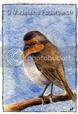 Robin Bird ACEO